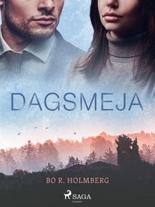 Dagsmeja (e-bok) av Bo R. Holmberg