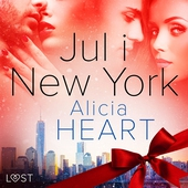 Jul i New York - erotisk julnovell