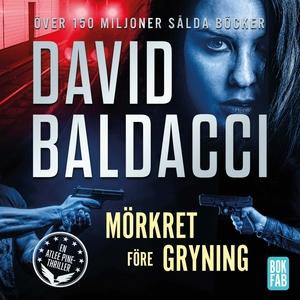 Mörkret före gryning (ljudbok) av David Baldacc