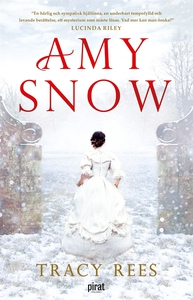 Amy Snow (e-bok) av Tracy Rees