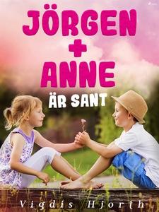 Jörgen + Anne är sant (e-bok) av Vigdis Hjorth