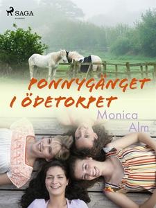 Ponnygänget i ödetorpet (e-bok) av Rune Olausso