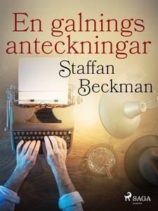 En galnings anteckningar (e-bok) av Staffan Bec