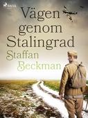 Vägen genom Stalingrad