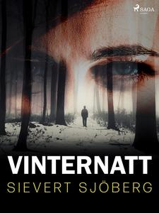 Vinternatt (e-bok) av Sievert Sjöberg