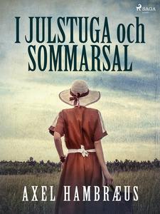 I julstuga och sommarsal (e-bok) av Axel Hambræ