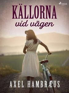 Källorna vid vägen (e-bok) av Axel Hambræus