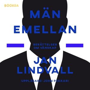 Män emellan (ljudbok) av Jan Lindvall