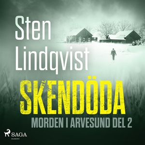 Skendöda (ljudbok) av Sten Lindqvist