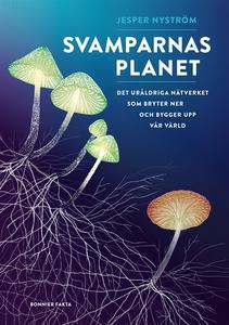 Svamparnas planet : Det uråldriga nätverket som