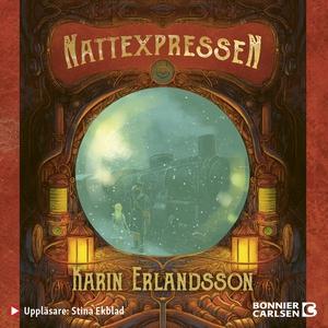Nattexpressen (ljudbok) av Karin Erlandsson