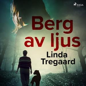 Berg av ljus (ljudbok) av Linda Tregaard