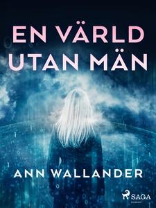 En värld utan män (e-bok) av Ann Wallander