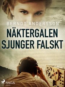 Näktergalen sjunger falskt (e-bok) av Berndt An