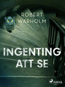 Ingenting att se (e-bok) av Robert Warholm