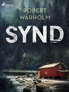Synd (e-bok) av Robert Warholm