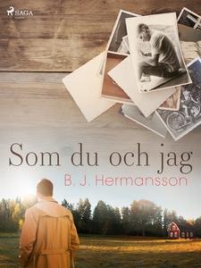 Som du och jag (e-bok) av B. J. Hermansson