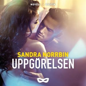 Uppgörelsen (ljudbok) av Sandra Norrbin