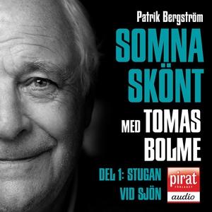 SOMNA SKÖNT Stugan vid sjön (ljudbok) av Patrik