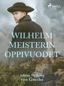 Wilhelm Meisterin oppivuodet
