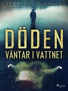 Döden väntar i vattnet (e-bok) av Birgitta Rudb