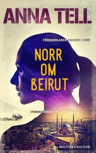 Norr om Beirut (e-bok) av Anna Tell