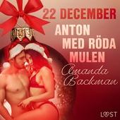 22 december: Anton med röda mulen - en erotisk julkalender
