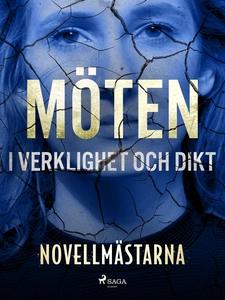 Möten i verklighet och dikt (e-bok) av Novellmä