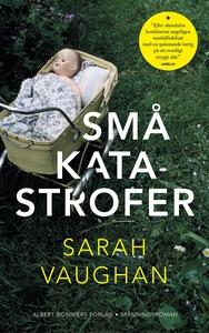 Små katastrofer (e-bok) av Sarah Vaughan