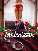 Tomtenissan - erotisk novell