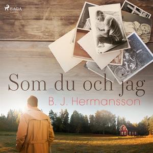Som du och jag (ljudbok) av B. J. Hermansson
