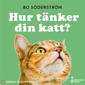 Hur tänker din katt? (ljudbok) av Bo Söderström