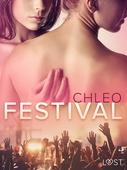 Festival - erotisk novell