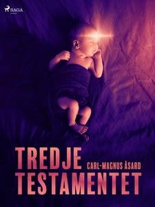Tredje Testamentet (e-bok) av Carl-Magnus Åsard