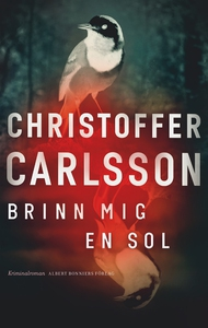 Brinn mig en sol (e-bok) av Christoffer Carlsso