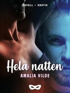 Hela natten (e-bok) av Amalia Vilde