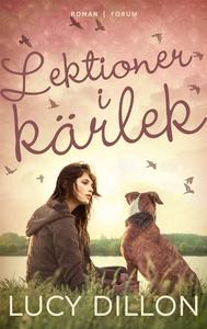 Lektioner i kärlek (e-bok) av Lucy Dillon
