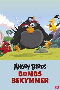 Angry Birds - Bombs bekymmer (e-bok) av Ferly