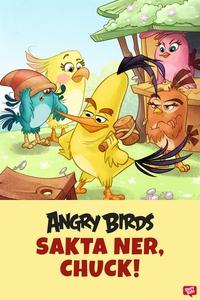 Angry Birds - Sakta ner, Chuck! (e-bok) av Sara