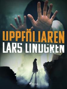 Uppföljaren (e-bok) av Lars Lindgren