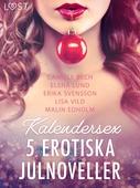 Kalendersex - 5 erotiska julnoveller