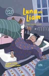 Liam sover över (e-bok) av Malin Stehn