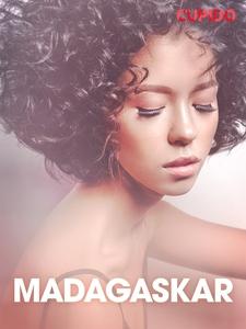 Madagaskar – erotiska noveller (e-bok) av Cupid