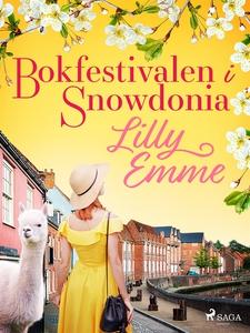 Bokfestivalen i Snowdonia (e-bok) av Lilly Emme
