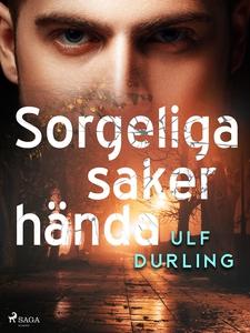 Sorgeliga saker hända (e-bok) av Ulf Durling