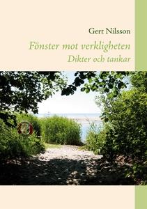 Fönster mot verkligheten (e-bok) av Gert Nilsso