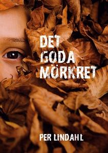 Det goda mörkret (e-bok) av Per Lindahl