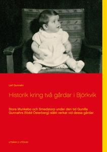 Historik kring två gårdar i Björkvik: Stora Mun