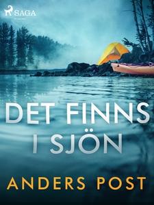 Det finns i sjön (e-bok) av Anders Post