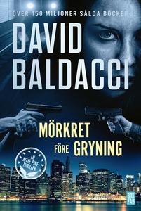 Mörkret före gryning (e-bok) av David Baldacci
